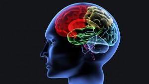 Krizat epileptike cfare duhet te dime