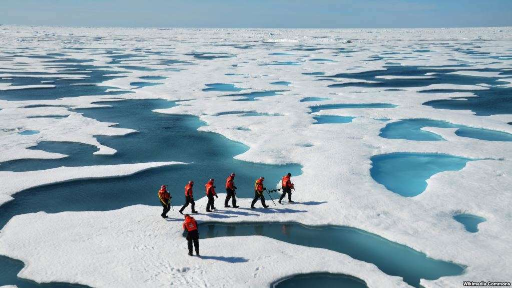 Bie në nivel rekord sasia e akullit në Arktik