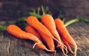Merrni ngjyrë portokalli