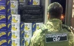 257 kg kokainë e fshehur në banane