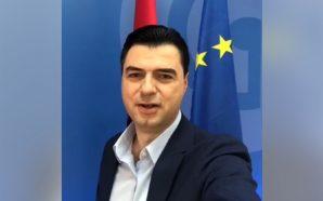 Zgjedhjet në PE, Basha apel shqiptarëve