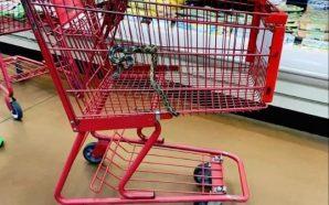 Po bënte pazar, gruaja gjen gjarpër në karrocë