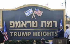 """Vendbanimi hebre merr emrin """"Lartësitë Trump"""""""